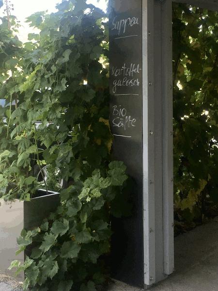 am donauradweg passau wien in der Wachau gelegenes Radler cafe