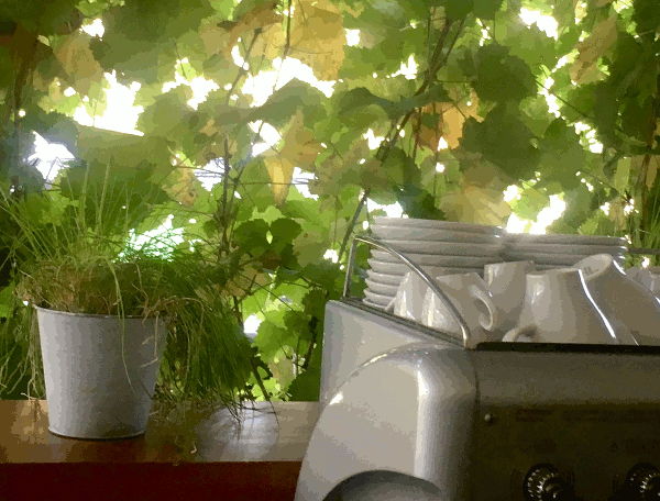 Kaffee am Donauradweg