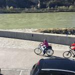 cyclists on the Danube cyclist track in the Wachau