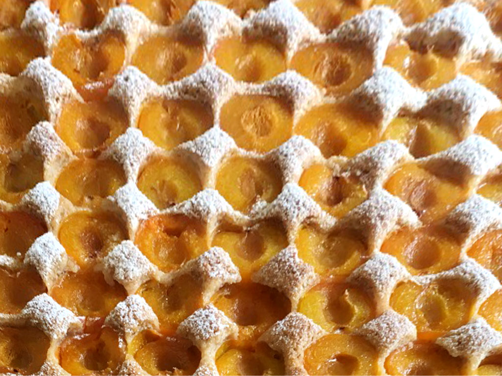 Marillen bzw. Aprikosen Kuchen