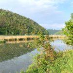 Donauradweg-Passau-Wien-Naturschutzgebiet-Kaiserau-Kobling