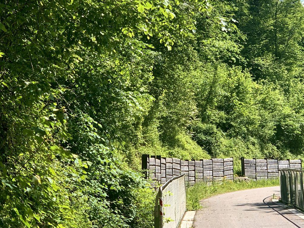 Der Ybbstalradweg bei Opponitz