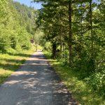 Am Ybbstalradweg vor St. Georgen am Reith
