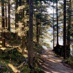 Weg am Altausseer See