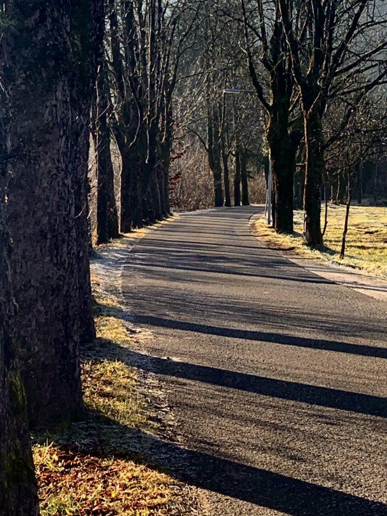 engleithenstraße in der Kaltenbachau