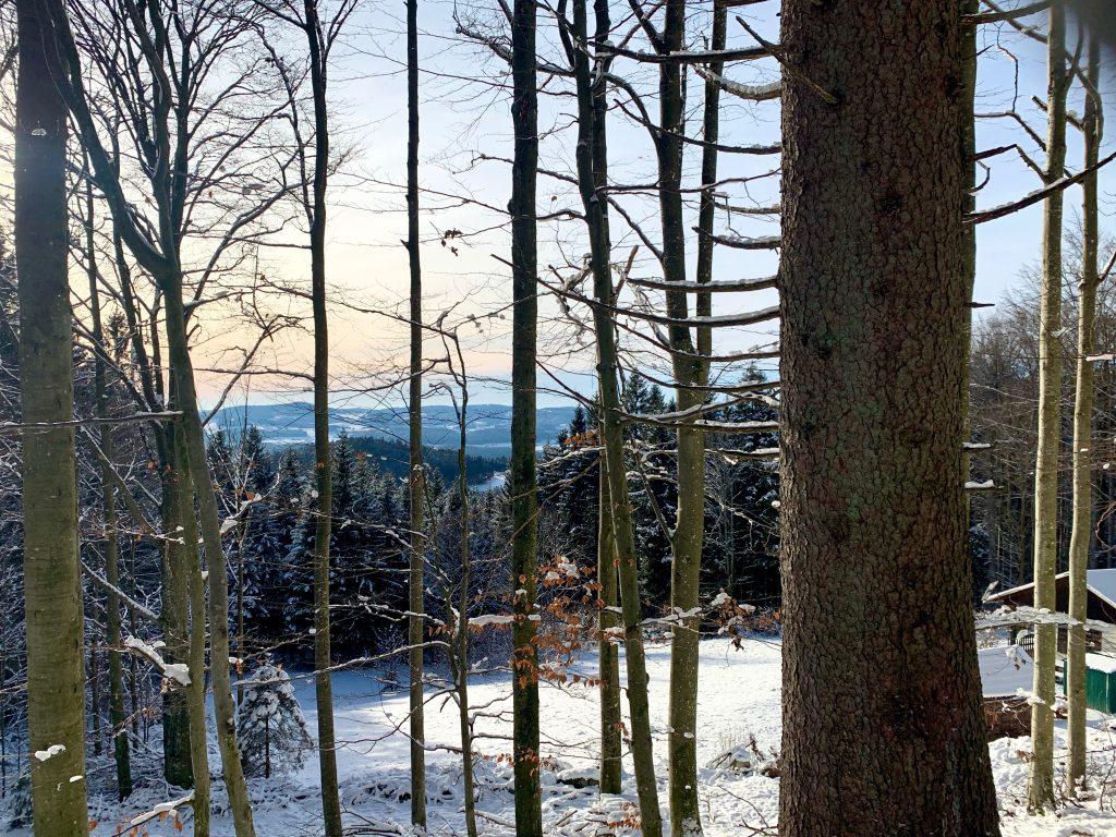 ausblick vom böhmerwald