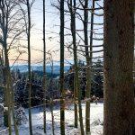Ausblick vom Boehmerwald