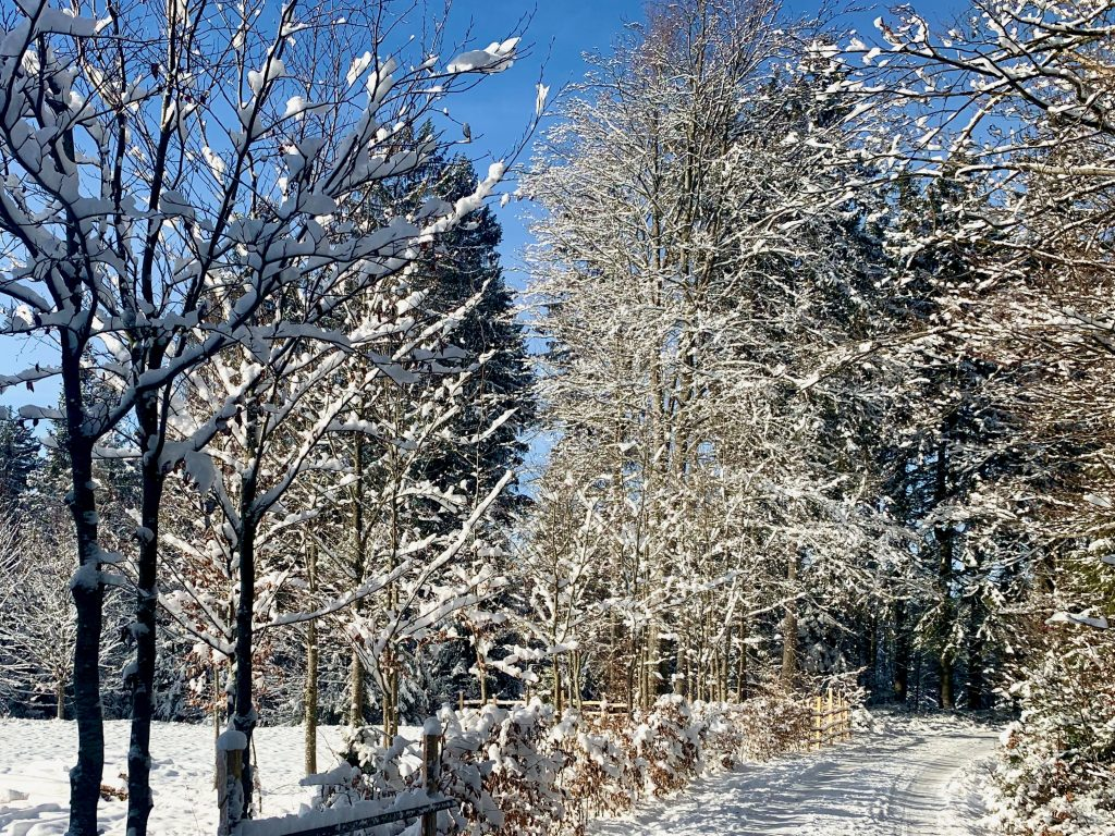 blauer himmel im böhmerwald