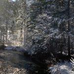 Die Steyr beim Haistriegelweg im Winter
