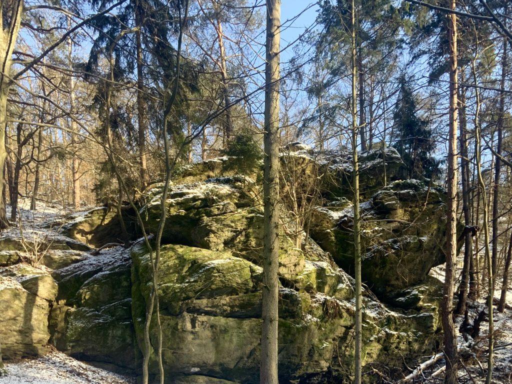 Gföhler Gneis im Reisperbachtal
