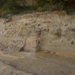 Lösswand am Fundort der Venus von Willendorf