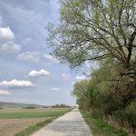 B10 Neusiedler See Radweg