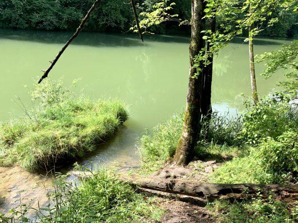 Am Wasser der Ybbs am Ybbstalradweg in Waidhofen an der Ybbs