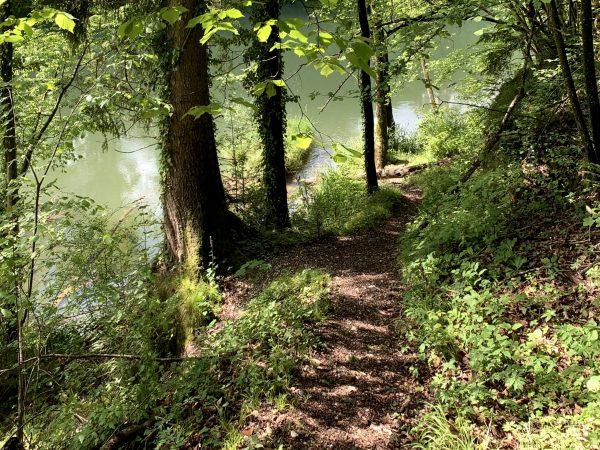 An der Ybbs in Waidhofen am Ybbstalradweg